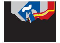 federación española de asociaciones de escuelas de español para extranjeros