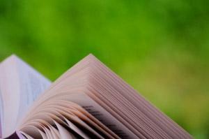 """Salamanca - Salmínter y el """"Día del libro"""""""